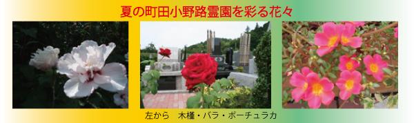 vol_25_02