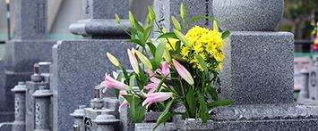 お墓・石材の種類