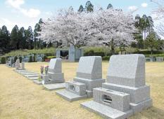 様々な種類の墓石から墓地にあわせて理想のデザインを探す