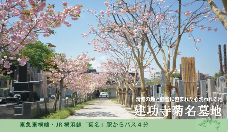 菊名駅から市営バス4分。横浜市鶴見区では稀少な平坦な墓地。参道の桜が美しい静寂な環境で永代に亘るご供養を。