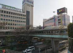 藤沢市でもお墓として永代供養墓を考える意味