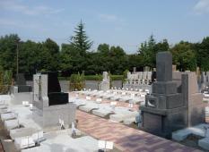神奈川県でお墓を購入するにはどうすればよいか