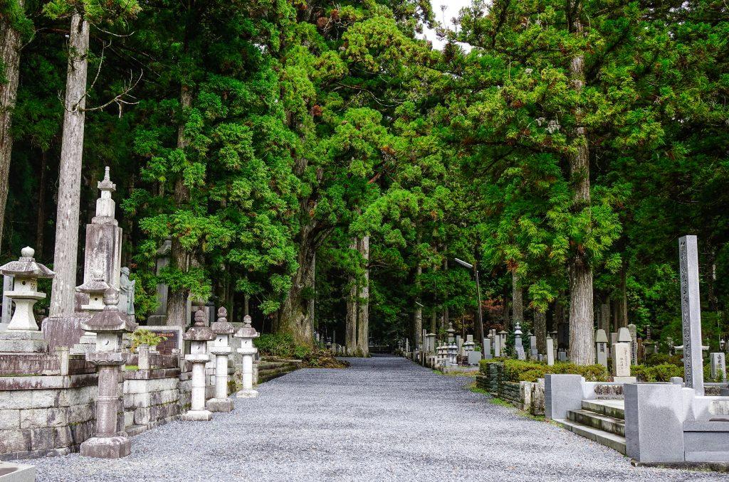 京王線沿線での霊園探しのポイントと注意点
