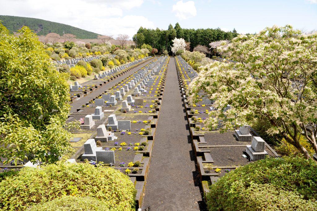 共同墓地を購入する時には相場を知っておくと便利