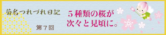 菊名つれづれ日記第7回