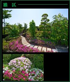 町田小野路霊園「雅」区のツツジ