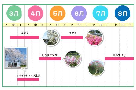 いづみ霊園01