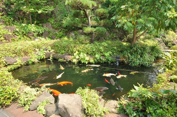 東戸塚霊園09