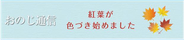 町田小野路霊園おのじ通信第61号