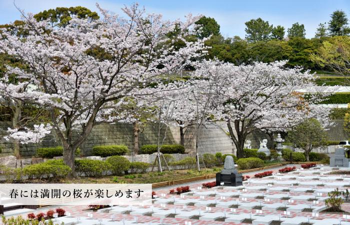 東戸塚霊園002